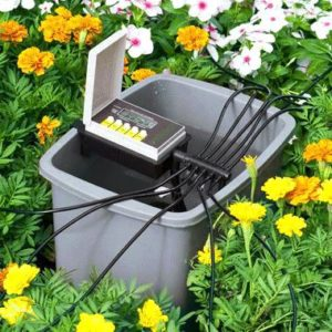 Automatic Plant Watering Systems